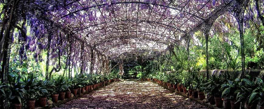 Jardín Botánico de la UAH